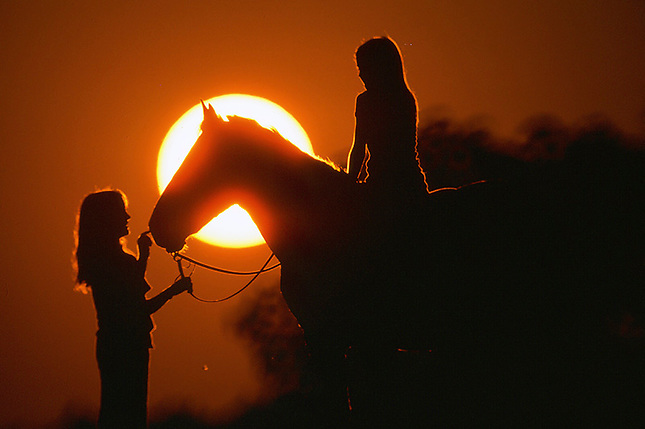 Silhouette of children with horse