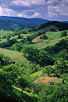 Oak trees and green grass hills in spring above Booneville and the Anderson Valley, Mendocino County, California