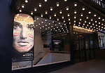 "Theatre Marquee for Idina Menzel starring in The Roundabout Theatre Company production of ""Skintight"",  at the Laura Pels Theatre on May 16, 2018 in New York City."