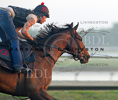 Palm Meadows Training Center 2-24-12
