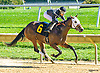 Karen's Chianti winning at Delaware Park on 10/10/16