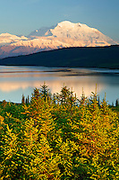 Mt. McKinley and Wonder Lake from Blueberry Hill, Denali National Park, Alaska