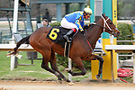 January 24, 2020: Gold Street with jockey Martin Garcia aboard winning the Smarty Jones Stakes at Oaklawn Racing Casino Resort in Hot Springs, Arkansas on January 24, 2020. Justin Manning/Eclipse Sportswire/CSM