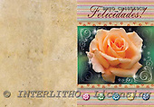 Alfredo, FLOWERS, paintings, BRTOCH40569CP,#F# Blumen, flores, illustrations, pinturas