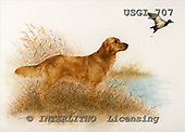 GIORDANO, REALISTIC ANIMALS, REALISTISCHE TIERE, ANIMALES REALISTICOS, paintings+++++,USGI707,#A# dogs