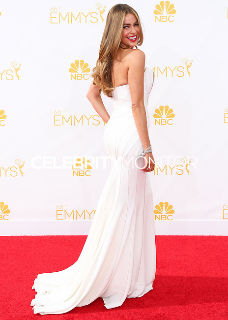 LOS ANGELES, CA, USA - AUGUST 25: Actress Sofia Vergara arrives at the 66th Annual Primetime Emmy Awards held at Nokia Theatre L.A. Live on August 25, 2014 in Los Angeles, California, United States. (Photo by Celebrity Monitor)