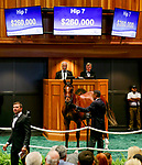 Hip #7 by Tiznow, out of Jules Best, a colt bred in Ontario and consigned by South Point Sales Agency Agent Iii sells for $260,000 on Day 1 of the Fasig Tipton Saratoga Select Yearling Sale at the Humphrey S. Finney Sales Pavilion on August 6, 2018 in Saratoga Springs, New York.