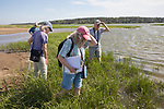 Judith, Mary, Diane & Bob On Horseshoe Crab Survey