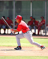 Efren Navarro / Los Angeles Angels 2008 Instructional League..Photo by:  Bill Mitchell/Four Seam Images