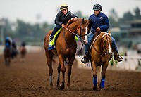 ARCADIA, CA - APRIL 02: Drayden Van Dyke pets Justify as they walk off the track after their workout at Santa Anita Park on April 02, 2018 in Arcadia, California. (Photo by Alex Evers/Eclipse Sportswire/Getty Images)