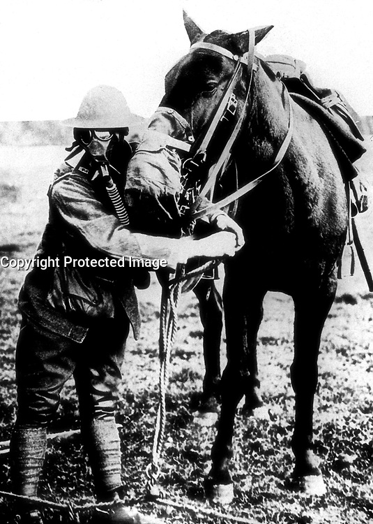 Gas masks for man and horse demonstrated by American soldier, ca.  1917-18.  (Bureau of Medicine and Surgery)<br /> Exact Date Shot Unknown<br /> NARA FILE #:  052-S-2303<br /> WAR &amp; CONFLICT BOOK #:  640