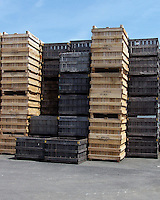 Spring, empty apple storage crates, Conklin's Orchard, Pomona, NY The Orchards of Concklin, Concklin's Orchard,