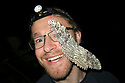 White Witch Moth (Thysania agrippina) on photographer Alex Hyde's face. Manu Biosphere Reserve, Amazonia, Peru.