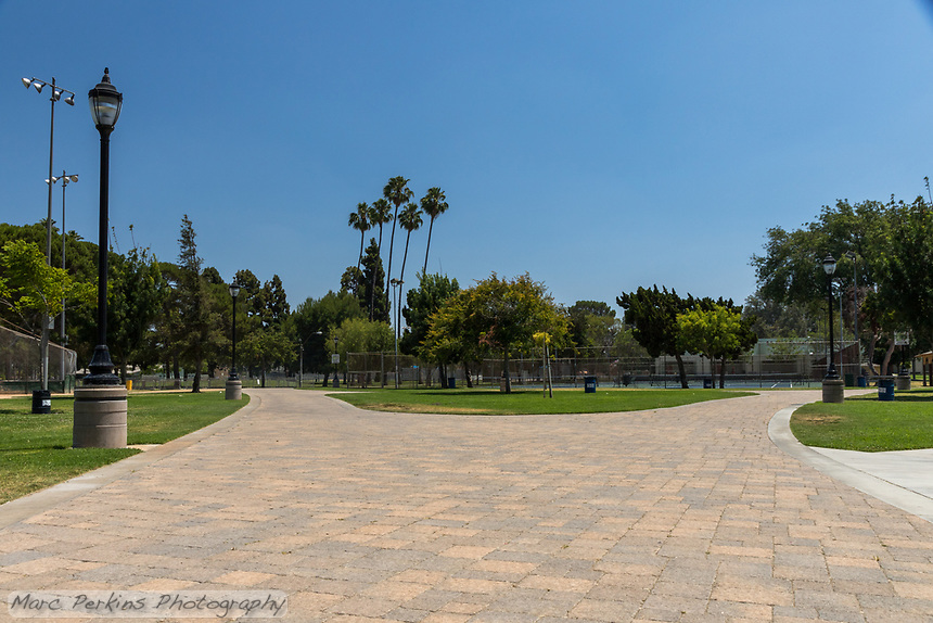 The paver pathway at South Gate Park splits evenly in two; palm trees, park lighting, and grass can also be seen.