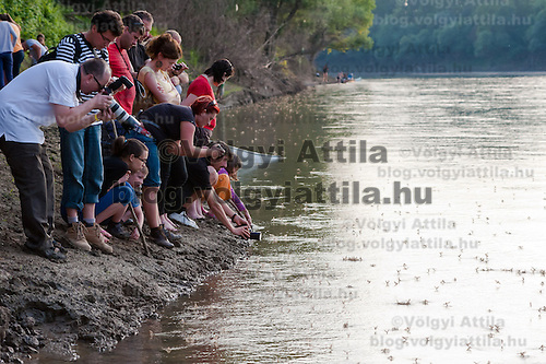 Onlookers watch the swarming of the long-tailed mayfliy (Palingenia longicauda) on the river Tisza in Tiszainoka (some 135 km south-east from Budapest), Hungary on June 12, 2011. ATTILA VOLGYI