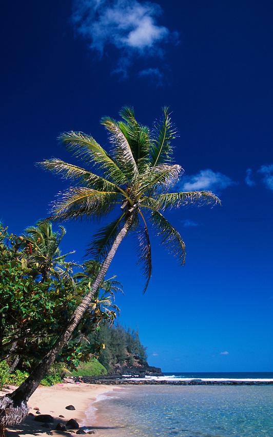 Hanalei Bay, Kaua'i, Hawaii