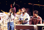 Beach Boys 1979 Dennis Wilson, Carl Wilson and Bruce Johnston on Midnight Special