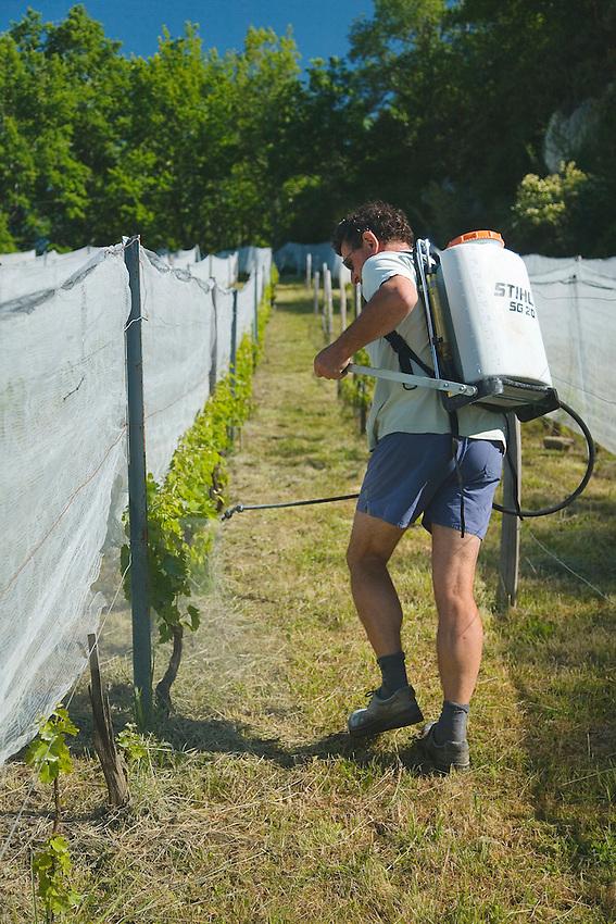 Traitement sans produits chimiques (hors infime dose de cuivre) à base d'infusion de prêles et d'orties.<br /> La tenue du viticulteur atteste de l'absence de nocivité du traitement.