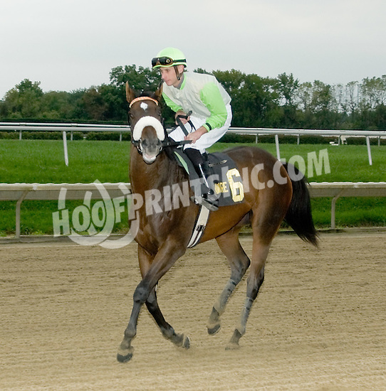 Grace Hall winning The Blue Hen Stakes at Delaware Park  on 10/1/11