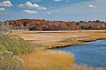 Autumn colors Sapowet Marsh in Tiverton, RI, USA