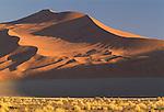 Landscapes Africa