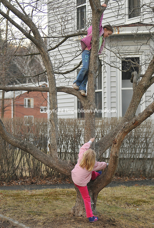 THOMASTON, CT-07 MARCH 2009-030710IP03-Shelby Smith (left), 8, and Susan Mongillo, 6, take advantage of the warmer weather and climb a tree outside their home on Clay St. in Thomaston on Sunday.<br /> Irena Pastorello Republican-American