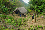 The footpath to Rosita's simple hut in the Sierra Maesta mountains.<br />