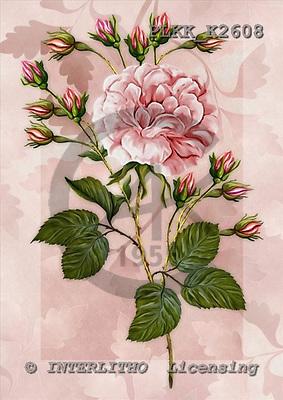 Kris, FLOWERS, paintings,+flowers, rose, roses,++++,PLKKK2608,#F# Blumen, flores, illustrations, pinturas ,everyday