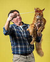 Jeff Muss of Sacramento, Calif. holds his Maine Coon named Caeser at the 44th East of Eden Cat Fancier's in Monterey, Calif. on Feb. 22, 2020.