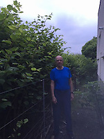 COPY BY TOM BEDFORD<br /> Pictured: Robin Waistell by the Japanese knotweed behind the properties in Maesteg.<br /> Re: A homeowner whose bungalow is towered over by Japanese knotweed on a railway line has won a four-year legal fight for compensation by Network Rail.<br /> Robin Waistell claimed he was unable to sell because the rail body had ignored requests to tackle the invasive weed on the bank behind his home in Maesteg.<br /> The case was seen as a likely test for homeowners whose property is blighted by knotweed on railway embankments.<br /> Network Rail said it would be &quot;reviewing the judgement in detail&quot;.<br /> It is understood the rail infrastructure body was refused immediate leave to appeal against the ruling.<br /> Network Rail faces potential legal costs running into six figures after losing the case in Cardiff bought by Mr Waistell and a neighbour.<br /> Widower Mr Waistell, 70, had moved to the bungalow from Spain after his wife died.<br /> He had hoped to return to the sun, but found his property sale stymied by the knotweed growing on adjacent Network Rail land and was asking for &pound;60,000 compensation for loss of value.