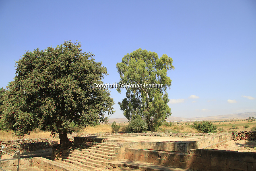 Israel, Upper Galilee, the High Place in Tel Dan