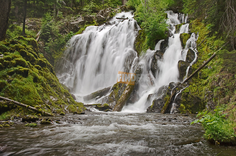 National Creek Falls, Rogue River National Forest, Oregon.