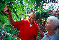 A senior couple admire the huge green tropical leaves in a garden on the Big Island of Hawaii.