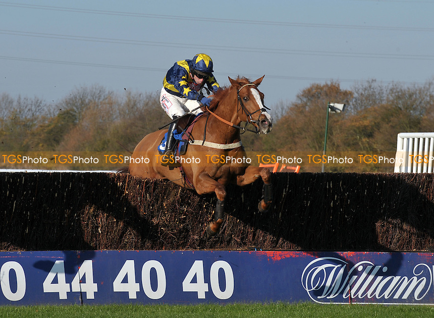 Kauto The Rock ridden by Wayne Hutchinson during the toteexacta Novices´ Chase  at Huntingdon Racecourse, Brampton, Cambridgeshire - 19/11/2011 - MANDATORY CREDIT: Martin Dalton/TGSPHOTO - Self billing applies where appropriate - 0845 094 6026 - contact@tgsphoto.co.uk - NO UNPAID USE.