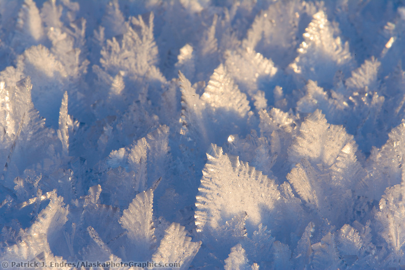 Hoar frost ice crystals, Fairbanks, Alaska. Formed when water vapor evaporates from a liquid water source and deposits on the object in the form of ice.