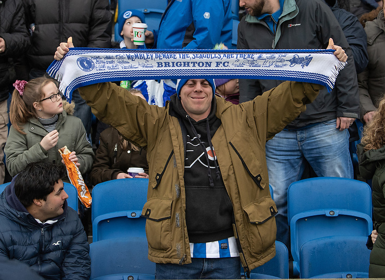 Brighton fan<br /> <br /> Photographer David Horton/CameraSport<br /> <br /> Emirates FA Cup Fourth Round - Brighton and Hove Albion v West Bromwich Albion - Saturday 26th January 2019 - The Amex Stadium - Brighton<br />  <br /> World Copyright © 2019 CameraSport. All rights reserved. 43 Linden Ave. Countesthorpe. Leicester. England. LE8 5PG - Tel: +44 (0) 116 277 4147 - admin@camerasport.com - www.camerasport.com