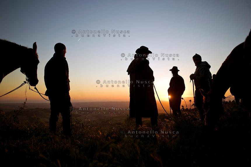 Mandriani all'alba in attesa di riprendere il cammino lungo l'antico tratturo che dalla Puglia porta alle montagne di Frosolone in Molise..The Colantuono family's herd walks toward a cooler climate.