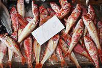 Fish Market, Cataina, Sicily