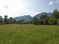 OR_LOCATION_45037