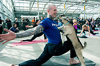 Instructor  Neil Cannon <br /> <br /> <br />  Sarnia Goat Yoga  at  DeGroot's Nurseries, Saturday March 11th, classes are 30 minutes due to time constraints. Regular classes are 60 minutes. Stephanie Cook, a Corunna native who owns a  hobby farm in Brooke-Alvinton Township said the class started out as one half hour demonstration class turned out to be three half hour sessions due to overwhelming response.