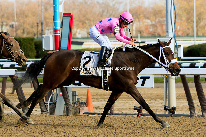 OZONE PARK, NY - NOVEMBER 26, 2016: Miss Sky Warrior #2  with Paco Lopez aboard. wins the Grade 2 Demoiselle Stakes for 2-year old fillies, at Aqueduct Racetrack . (Photo by Sue Kawczynski/Eclipse Sportswire/Getty Images)