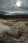 Geothermal steam venting out of Scalloped Spring, Upper Geyser Basin, Yellowstone National Park, Wyoming