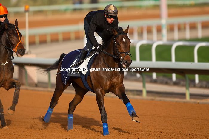 RIYADH,SAUDI ARABIA-FEB 27: Cherokee Trial excercises for Saidi Derby at King Abdulaziz Racetrack on February 28,2020 in Riyadh,Saudi Arabia. Kaz Ishida/Eclipse Sportswire/CSM
