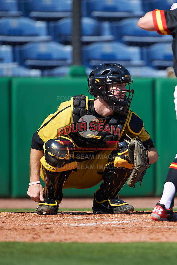 Alabama State Hornets catcher Chris Biocic (19) waits for a pitch during a game against the Maryland Terrapins on February 19, 2017 at Spectrum Field in Clearwater, Florida.  Maryland defeated Alabama State 9-7.  (Mike Janes/Four Seam Images)