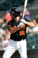 Rochester Red Wings infielder Brian Dinkelman (12) at bat during a game vs. the Norfolk Tides at Frontier Field in Rochester, New York;  May 31, 2010.   Norfolk defeated Rochester by the score of 2-1.  Photo By Mike Janes/Four Seam Images