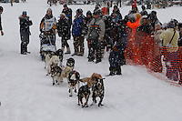 MacKenzie Davis of Wasiall leaves the start line of the 2009 Junior Iditarod on Knik Lake on Saturday Februrary 28, 2009.