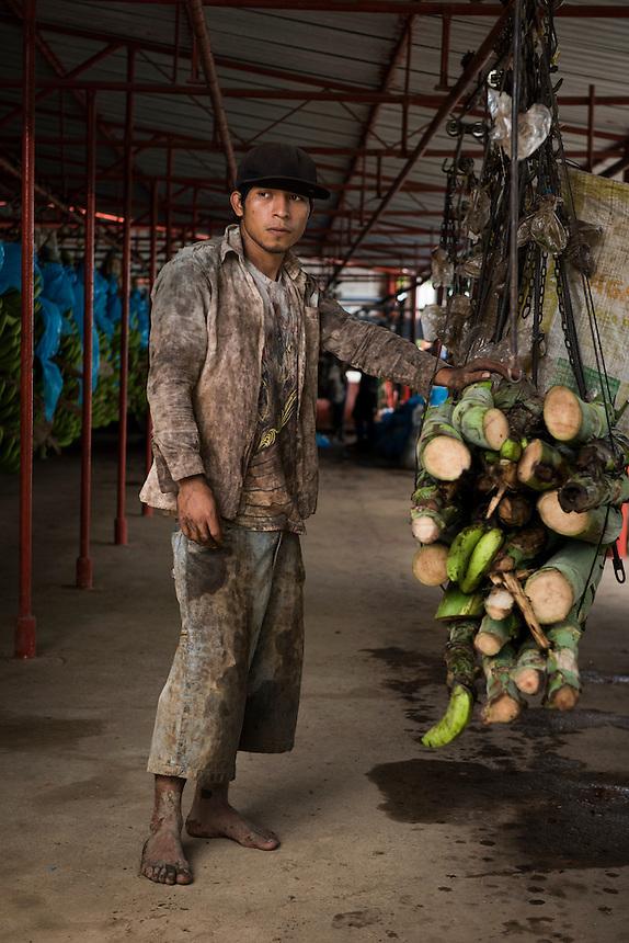 Constantine Garcia Pastrano. Chula Banana plantation, Teapa, Tabasco, Mexico