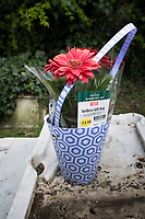 Plastice flowers, nature vs. nature. Nunhead Cemetery and Telegraph Hill, London, UK