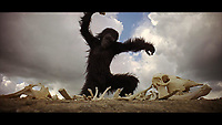 2001: A Space Odyssey (1968)<br /> *Filmstill - Editorial Use Only*<br /> CAP/MFS<br /> Image supplied by Capital Pictures