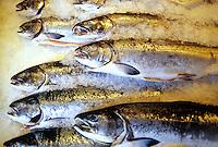 Fish display Pikes Place Market. Seattle, Washington
